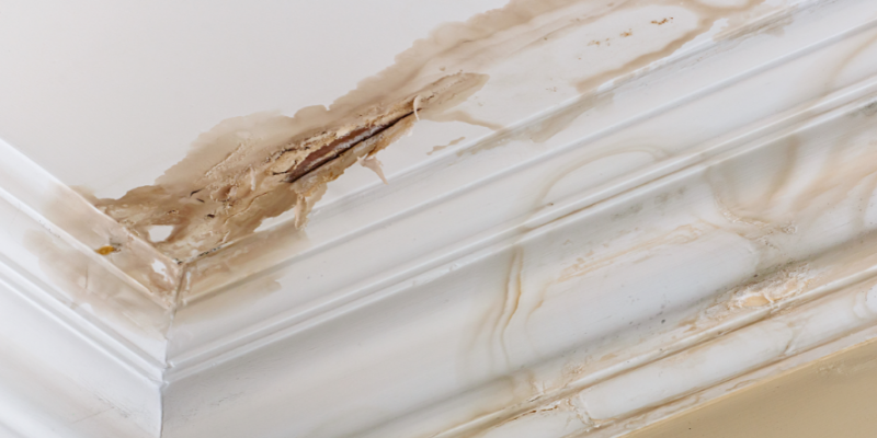 Water-stained Ceilings